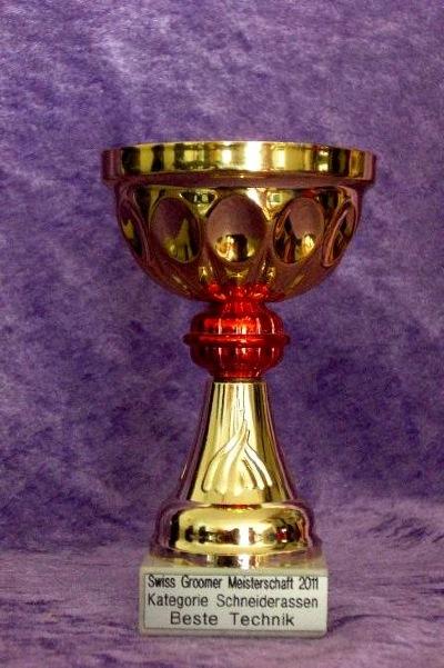 Swiss Groomer Meisterschaft 2011